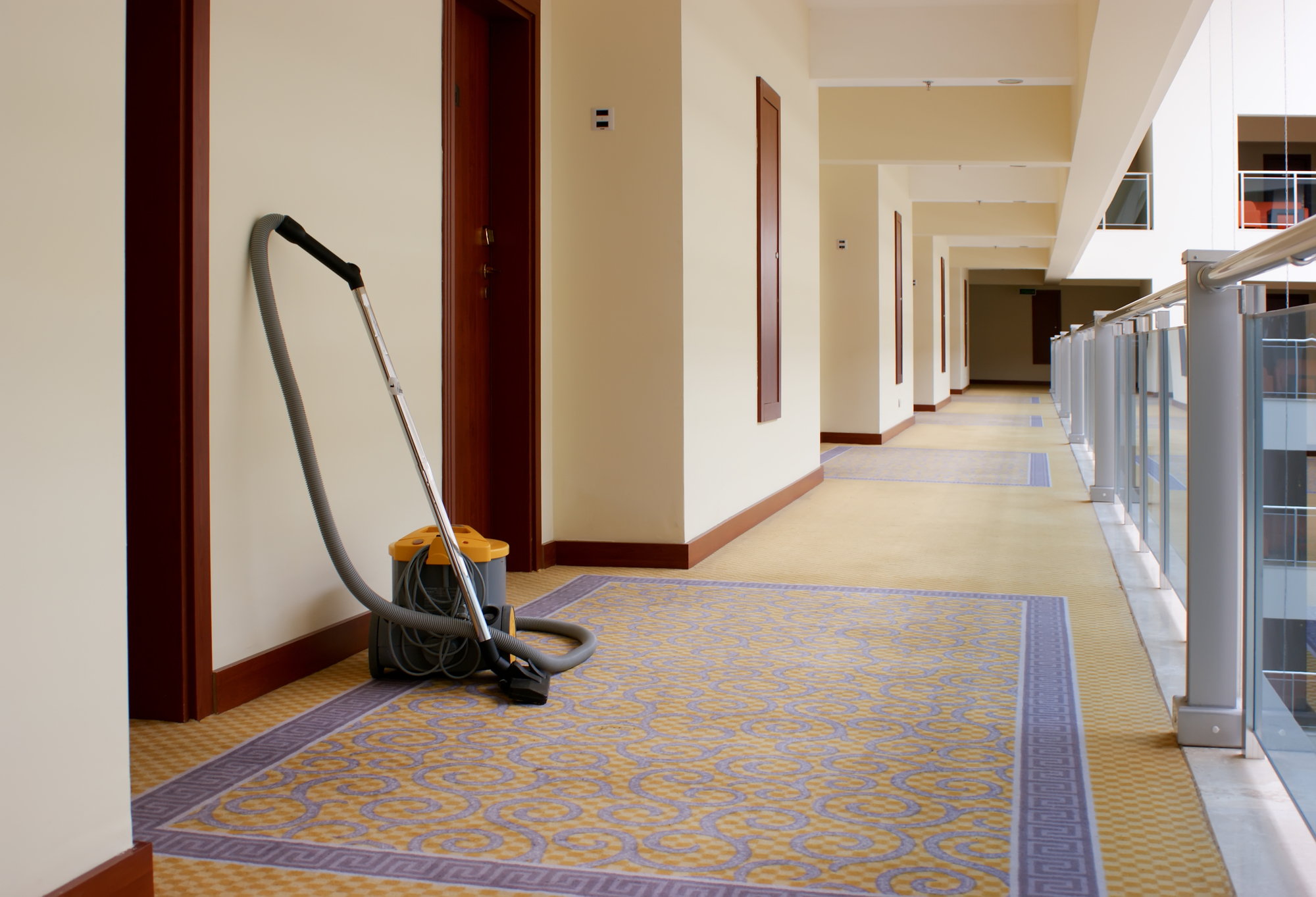 Hallway Cleaning